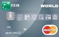 TEB World Profesyonel Kart kredi kartı görseli.
