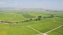 Çiftçilere büyük müjde! Hazineye ait tarım arazileri çiftçilere kiralanacak Haberi Görseli