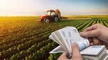 Bakan Pakdemirli'den 2 bin lira tarımsal destek müjdesi Haberi Görseli